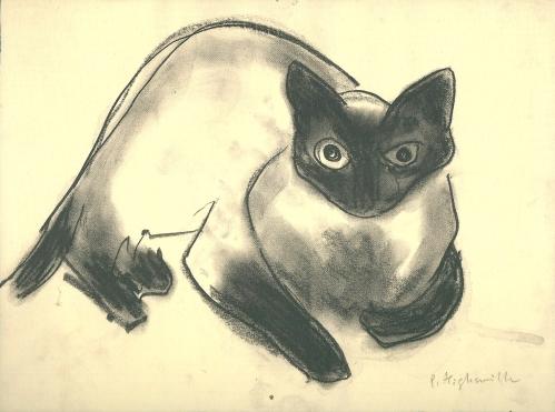 Patricia Highsmith (1921-1995) Sammy by Sammy | 1967 | Kohle auf Papier | © by Diogenes Verlag, Zürich